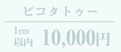 ピコタトゥー 10,000円〜