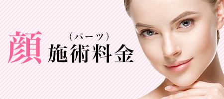 顔の施術料金